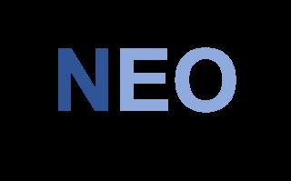Logo Neosilver